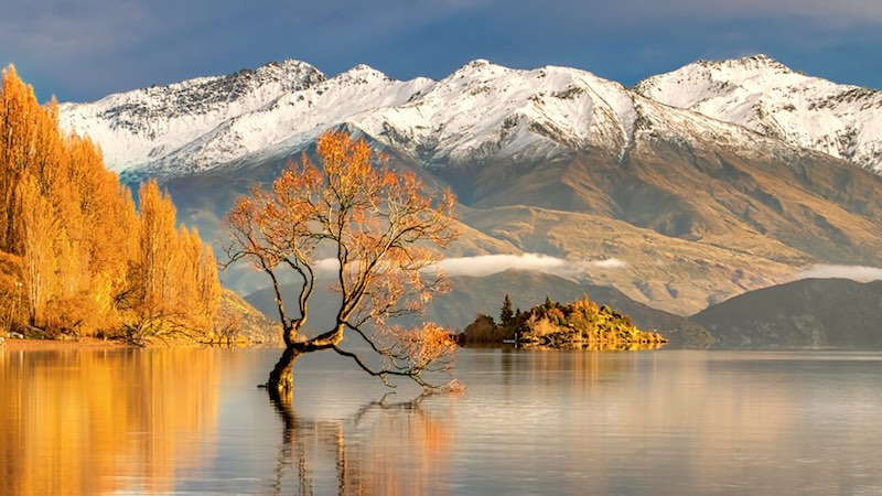 Rowing tours NZ